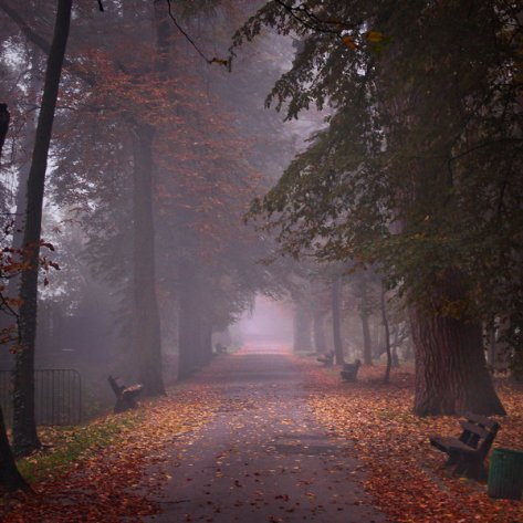 Colors_of_the_autumn_by_WiciaQ